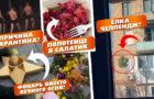 Еженедельный обзор пабликов и сайтов Мелитополя с Маргаритой Киенко — выпуск10